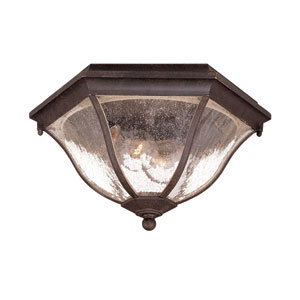 Black Coral Two-Light 7.75-Inch Outdoor Ceiling Flush Mount