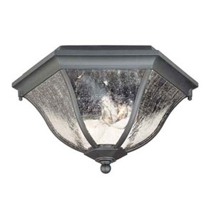 Matte Black Two-Light 7.75-Inch Outdoor Ceiling Flush Mount
