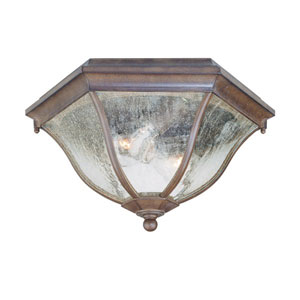 Burled Walnut Two-Light 7.75-Inch Outdoor Ceiling Flush Mount