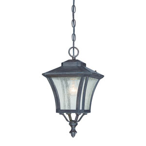 Tuscan Black Coral One-Light Outdoor Hanging Lantern with Clear Seeded Glass