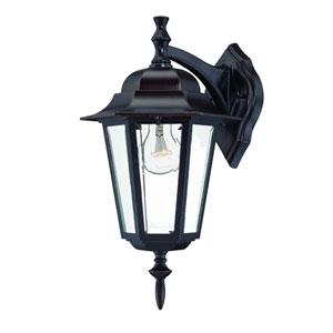 Camelot Architectural Bronze One-Light Wall Fixture