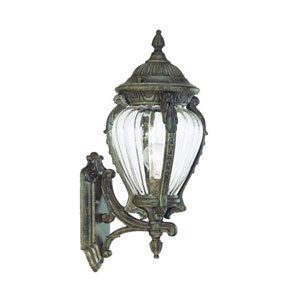 Nottingham Black Coral One-Light 21-Inch Outdoor Wall Mount