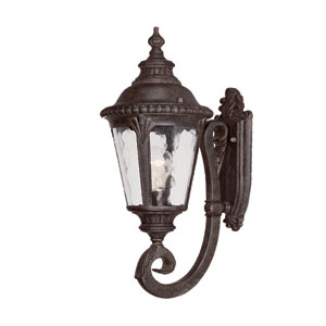 Surrey Black Coral One-Light 19.5-Inch Outdoor Wall Mount