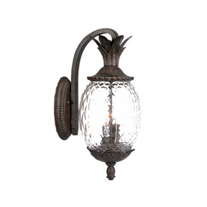 Lanai Black Coral Three-Light 21.75-Inch Outdoor Wall Mount