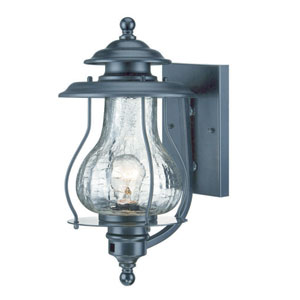 Blue Ridge Matte Black One-Light Outdoor Wall Mount with Clear Crackled Glass