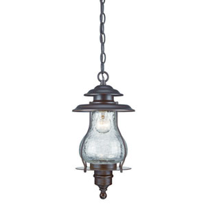 Blue Ridge Architectural Bronze One-Light Outdoor Hanging Lantern with Clear Crackled Glass