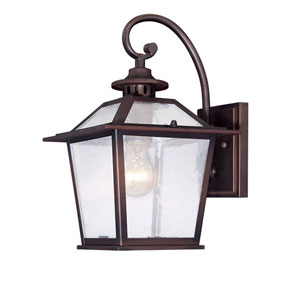 Salem Architectural Bronze One-Light Outdoor Wall Mount with Clear Seeded Glass