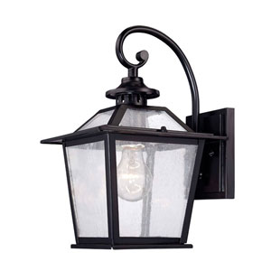Salem Matte Black One-Light Outdoor Wall Mount with Clear Seeded Glass