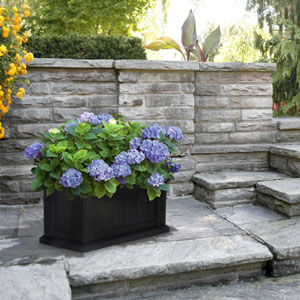 Cape Cod Black Patio Planter 24 x 11 Inch