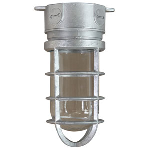 Retropolitan Galvanized 10-Inch Height One-Light Outdoor Ceiling Mount