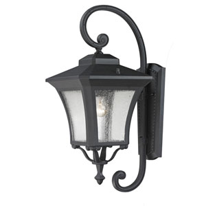 Waterdown One-Light Sand Black Outdoor Wall Light with Clear Seedy Glass