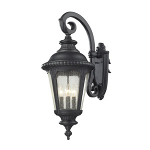 Medow Four-Light Black Outdoor Wall Mount with Clear Seedy Glass