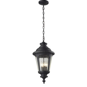 Medow Four-Light Black Outdoor Chain Pendant Light with Clear Seedy Glass