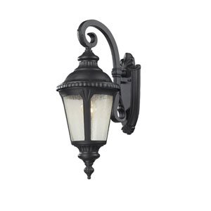Medow One-Light Black  Outdoor Wall Mount with Clear Seedy Glass