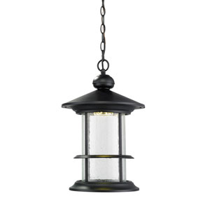 Genesis Black 11.5-Inch One-Light LED Outdoor Pendant with Clear Seedy Glass