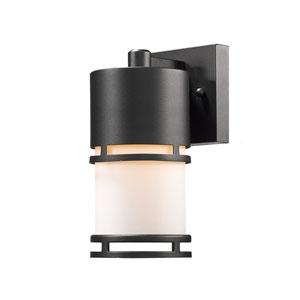Luminata Black 9-Inch LED Outdoor Wall Mount