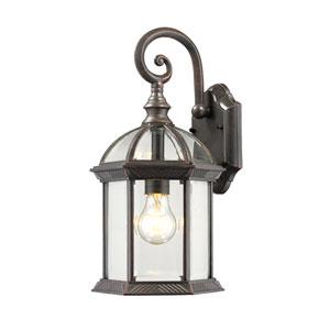 Annex Rust One-Light  Outdoor Wall Lantern
