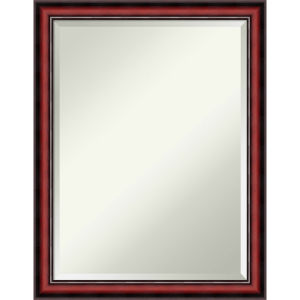 Rubino Brown 21W X 27H-Inch Decorative Wall Mirror