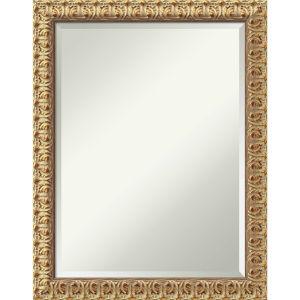 Florentine Gold 22W X 28H-Inch Decorative Wall Mirror
