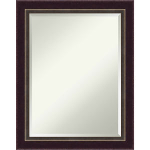 Signore Bronze 22W X 28H-Inch Decorative Wall Mirror