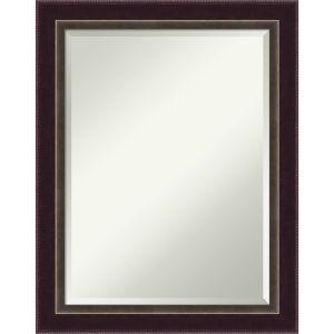 Signore Bronze 22W X 28H-Inch Decorative Wall Mirror