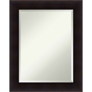 Portico Espresso 24W X 30H-Inch Decorative Wall Mirror