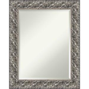 Silver 24W X 30H-Inch Decorative Wall Mirror