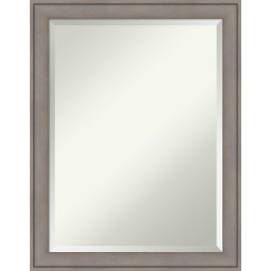 Gray 21 W X 27 H-Inch Bathroom Vanity Wall Mirror
