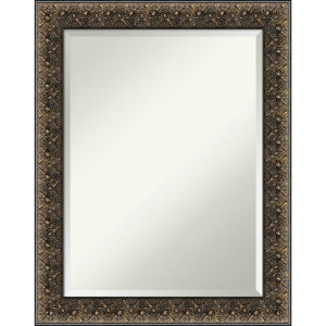 Intaglio Black 23W X 29H-Inch Bathroom Vanity Wall Mirror