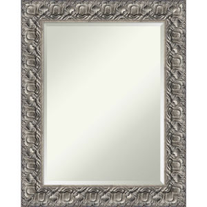 Silver 24W X 30H-Inch Bathroom Vanity Wall Mirror