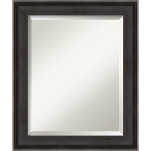 Allure Charcoal 20-Inch Bathroom Wall Mirror