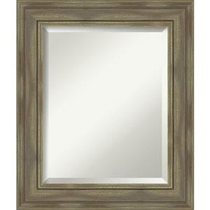 Alexandria Graywash 22-Inch Wall Mirror