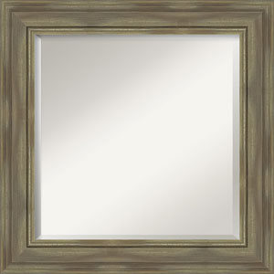 Alexandria Graywash 26-Inch Wall Mirror