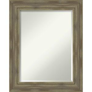 Alexandria Graywash 24-Inch Bathroom Wall Mirror