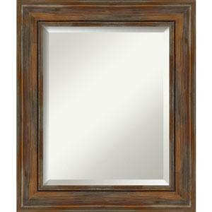 Alexandria Rustic Brown 22-Inch Bathroom Wall Mirror