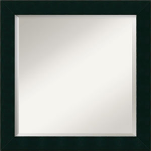 Tribecca Black 24-Inch Bathroom Wall Mirror
