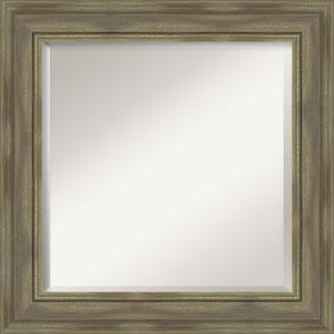 Alexandria Graywash 26-Inch Bathroom Wall Mirror