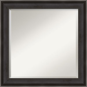 Allure Charcoal 24-Inch Bathroom Wall Mirror