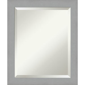 Brushed Nickel 20W X 24H-Inch Bathroom Vanity Wall Mirror