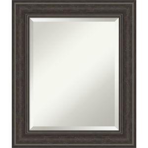 Shipwreck Gray 21W X 25H-Inch Bathroom Vanity Wall Mirror