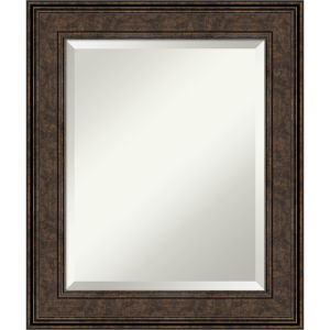 Ridge Bronze 22W X 26H-Inch Bathroom Vanity Wall Mirror