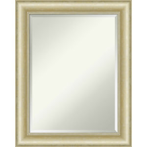 Gold 23W X 29H-Inch Bathroom Vanity Wall Mirror