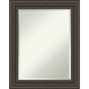 Shipwreck Gray 23W X 29H-Inch Bathroom Vanity Wall Mirror