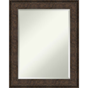 Ridge Bronze 24W X 30H-Inch Bathroom Vanity Wall Mirror