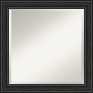 Shipwreck Black 24W X 24H-Inch Bathroom Vanity Wall Mirror