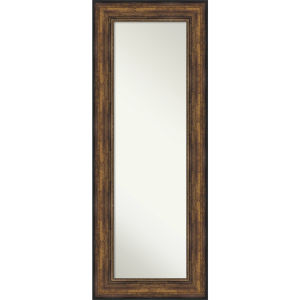 Bronze 22W X 56H-Inch Full Length Mirror