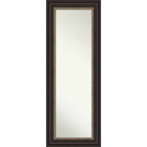 Bronze 20W X 54H-Inch Full Length Mirror
