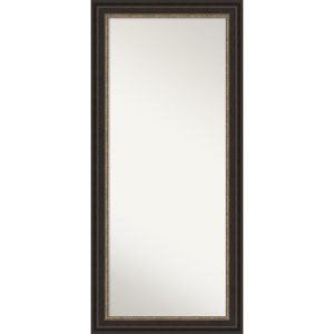 Bronze 30W X 66H-Inch Full Length Floor Leaner Mirror