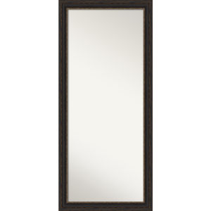 Bronze 29W X 65H-Inch Full Length Floor Leaner Mirror