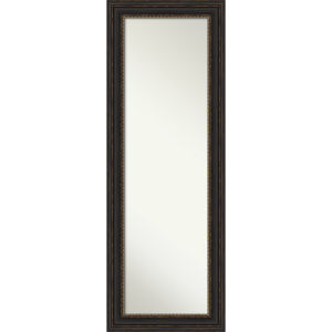 Bronze 19W X 53H-Inch Full Length Mirror